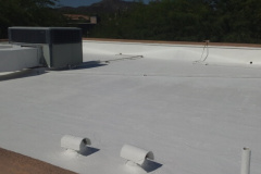 Roof with TPO coating